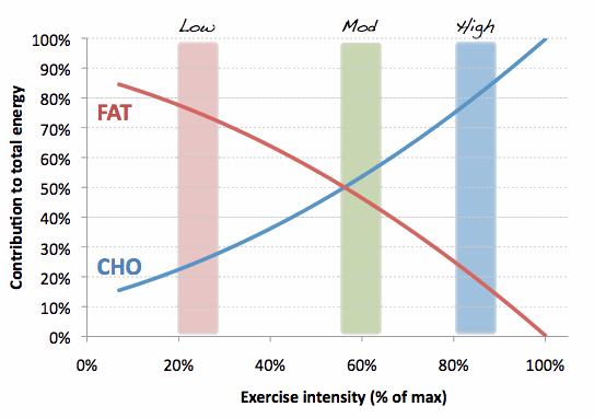 Fat-and-CHO-use-with-ex-intensity1